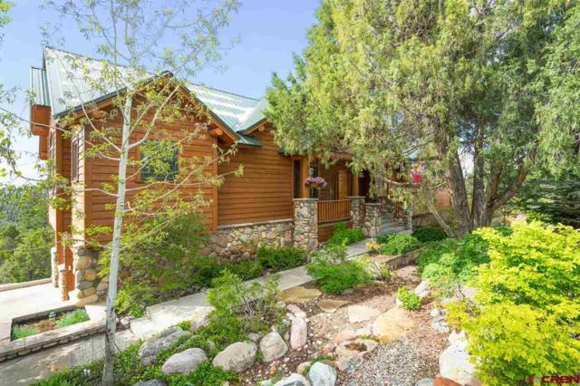 214 Far View Road, Durango, CO 81303 (MLS #757950) :: Durango Mountain Realty