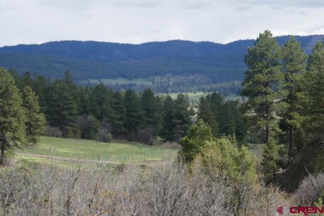 683 Quien Sabe Street, Pagosa Springs, CO 81147 (MLS #758037) :: The Dawn Howe Group   Keller Williams Colorado West Realty