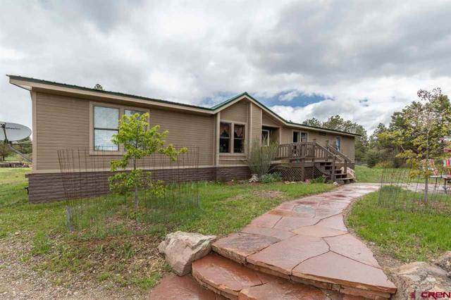 258 Alpine Drive, Durango, CO 81301 (MLS #758139) :: Durango Mountain Realty