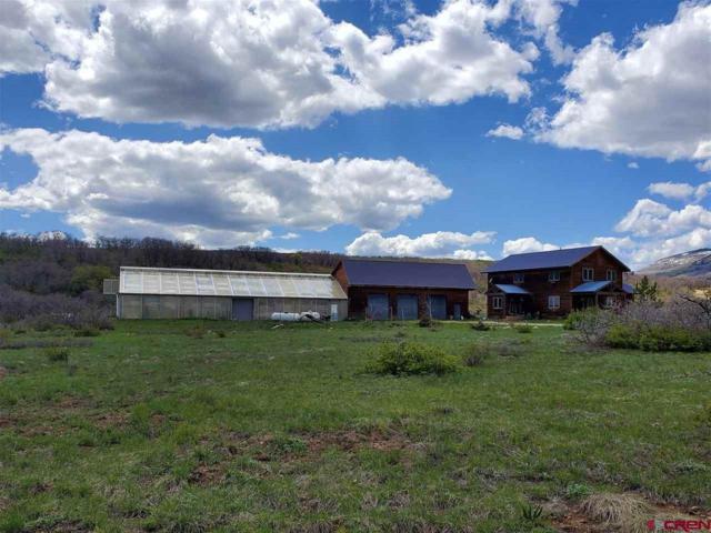 2407 Cr 124, Hesperus, CO 81326 (MLS #758283) :: Durango Mountain Realty
