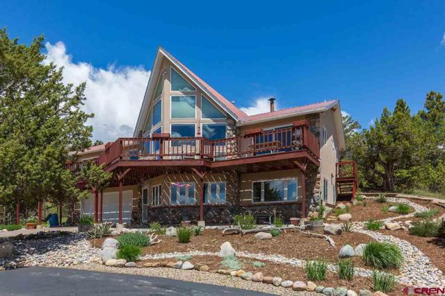 3437 Cr 228, Durango, CO 81301 (MLS #758354) :: Durango Mountain Realty