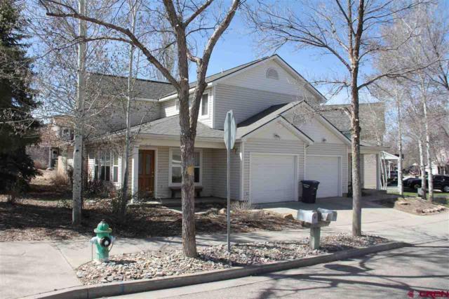 126 Ryler Drive, Durango, CO 81301 (MLS #758358) :: Durango Mountain Realty