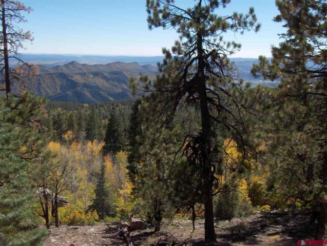 Lot 14 Durango Cliffs Dr, Durango, CO 81301 (MLS #758372) :: Durango Mountain Realty