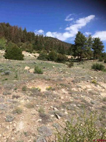 Ellingwood Drive, South Fork, CO 81154 (MLS #758437) :: The Dawn Howe Group | Keller Williams Colorado West Realty