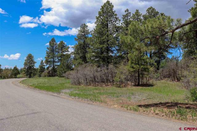 TBD Ridge Road, Durango, CO 81301 (MLS #758637) :: Durango Mountain Realty