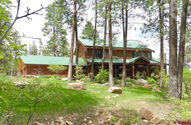 364 Nusbaum Road, Durango, CO 81301 (MLS #758680) :: Durango Mountain Realty