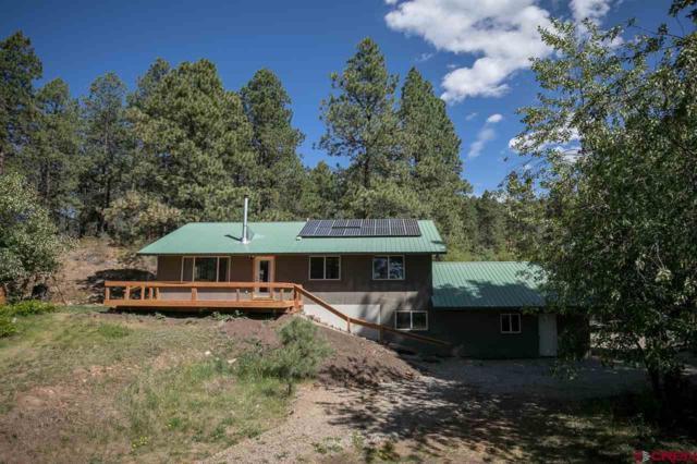 344 Groves Drive, Durango, CO 81301 (MLS #758774) :: Durango Mountain Realty