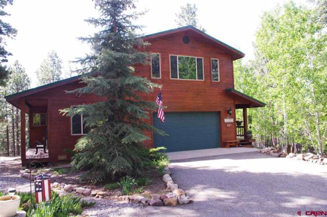 692 Skyline Drive, Bayfield, CO 81122 (MLS #758797) :: Durango Mountain Realty