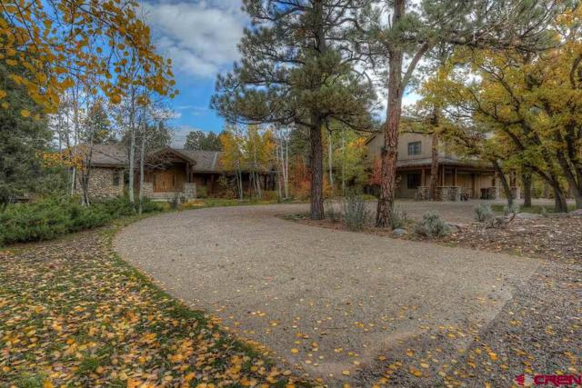 12670 County Road 250, Durango, CO 81301 (MLS #758805) :: Durango Mountain Realty