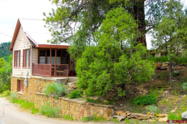 3500 N Main Avenue, Durango, CO 81301 (MLS #758852) :: Durango Mountain Realty