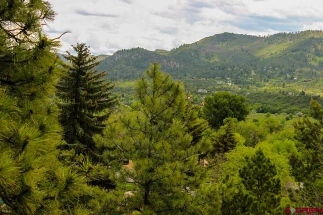 3500 N Main Avenue, Durango, CO 81301 (MLS #758863) :: Durango Mountain Realty