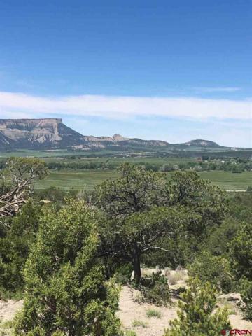 7635 Road 40.3, Mancos, CO 81328 (MLS #758983) :: The Dawn Howe Group | Keller Williams Colorado West Realty