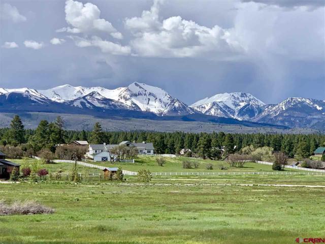 88 Tierra Alta, Durango, CO 81303 (MLS #758987) :: Durango Mountain Realty