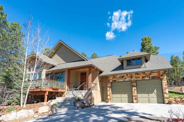 46 Mill Creek Court, Durango, CO 81301 (MLS #758996) :: Durango Mountain Realty