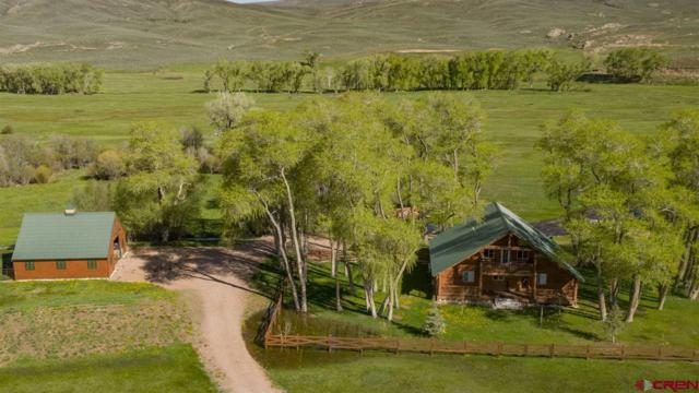 5155 County Road 76 Road, Parlin, CO 81239 (MLS #759028) :: The Dawn Howe Group | Keller Williams Colorado West Realty