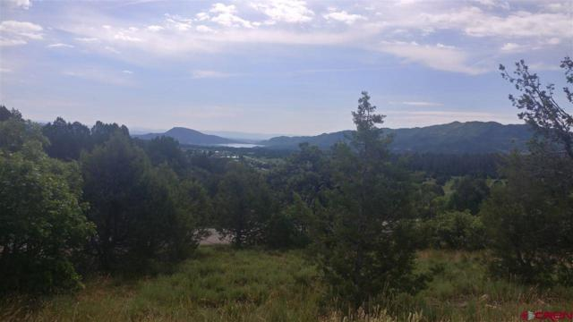TBD Hutch Lane, Durango, CO 81301 (MLS #759107) :: Durango Mountain Realty
