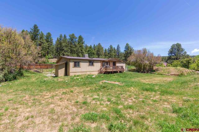 4043 County Road 240, Durango, CO 81301 (MLS #759113) :: Durango Mountain Realty