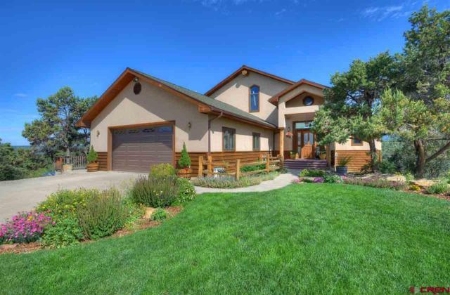 187 King Mountain Road, Durango, CO 81303 (MLS #759114) :: Durango Mountain Realty