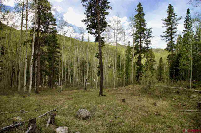 TBD County Road 888, White Pine, CO 81248 (MLS #759148) :: The Dawn Howe Group | Keller Williams Colorado West Realty