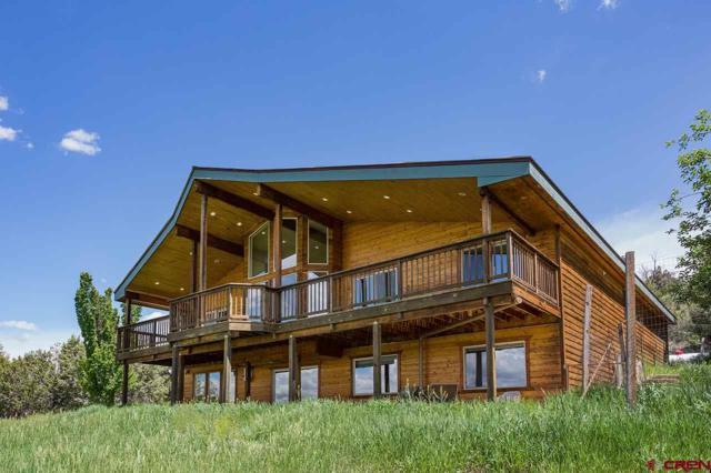 120 Sundance Circle, Durango, CO 81303 (MLS #759150) :: Durango Mountain Realty