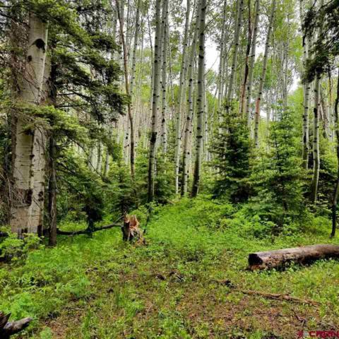 TBD Grizzly Lane, Durango, CO 81301 (MLS #759184) :: Durango Mountain Realty