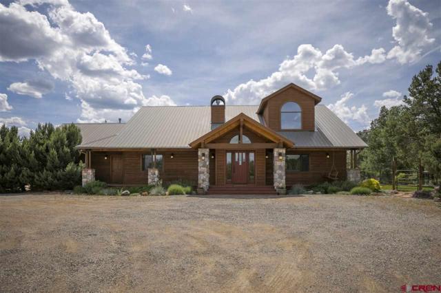 806 Squaw Apple Road, Durango, CO 81301 (MLS #759209) :: Durango Mountain Realty