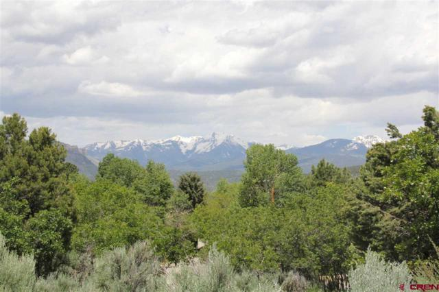474 Hillcrest Drive, Durango, CO 81301 (MLS #759213) :: Durango Mountain Realty