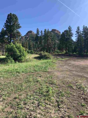 (Lot 53)  41 Wild iris Avenue, Durango, CO 81301 (MLS #759219) :: Durango Mountain Realty