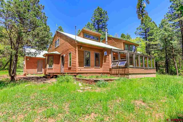 195 Aspen Lane, Durango, CO 81301 (MLS #759224) :: Durango Mountain Realty