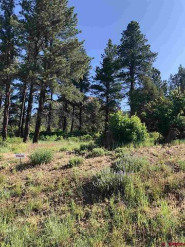 (Lot 27) 122 Wood Rose Lane, Durango, CO 81301 (MLS #759228) :: Durango Mountain Realty