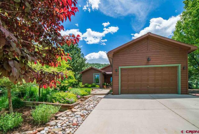 330 Hillcrest Drive, Durango, CO 81301 (MLS #759503) :: Durango Mountain Realty