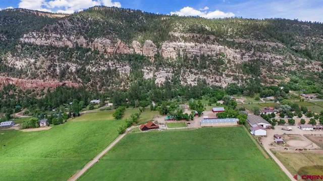 1825 Cr 250, Durango, CO 81301 (MLS #759673) :: Durango Mountain Realty