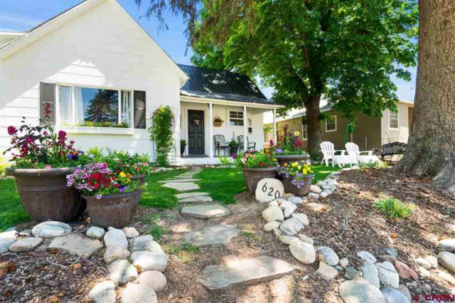 620 E 7th Avenue, Durango, CO 81301 (MLS #759681) :: Durango Mountain Realty