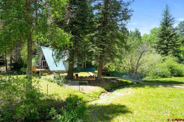 151 Trew Creek Drive, Durango, CO 81301 (MLS #759739) :: Durango Mountain Realty