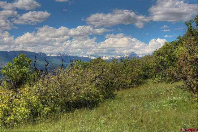 991 Purple Sage Road, Durango, CO 81301 (MLS #759753) :: Durango Mountain Realty