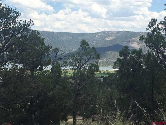 67 Hoot'n Holler, Arboles, CO 81121 (MLS #759756) :: The Dawn Howe Group | Keller Williams Colorado West Realty
