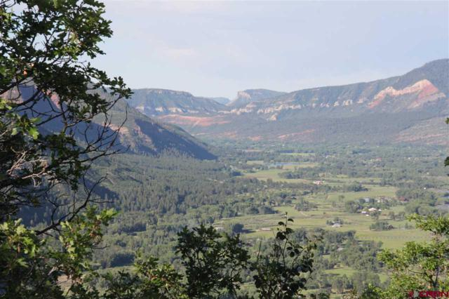 3158 Elkhorn Mountain Road, Durango, CO 81301 (MLS #759790) :: Durango Mountain Realty