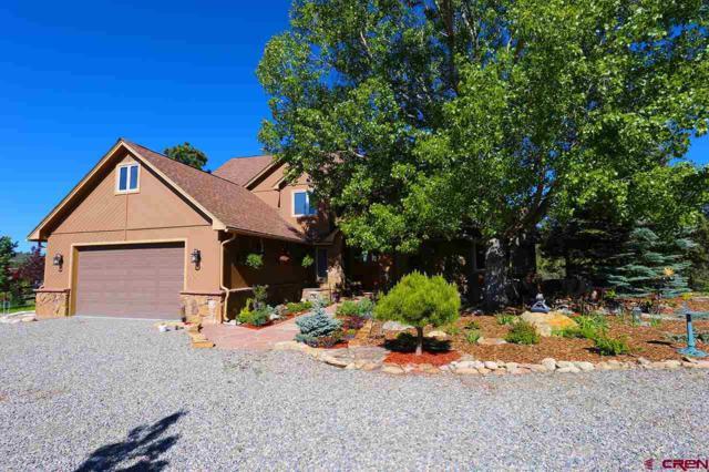 726 Shenandoah Road, Durango, CO 81303 (MLS #759818) :: Durango Mountain Realty