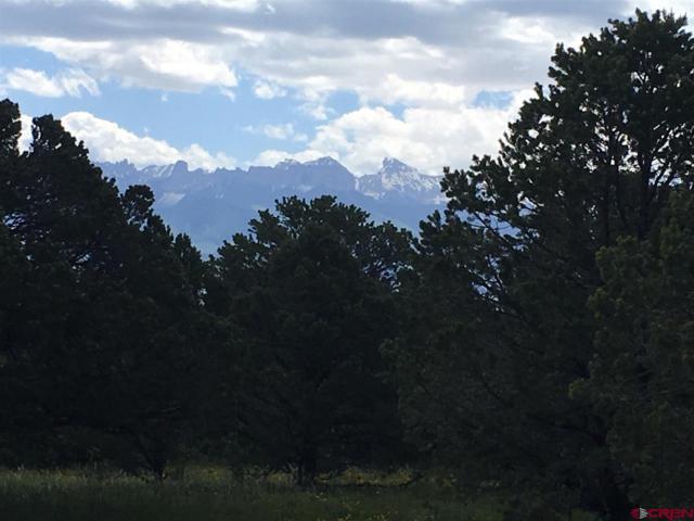 186 Cedar Lane E, Ridgway, CO 81432 (MLS #759942) :: The Dawn Howe Group | Keller Williams Colorado West Realty