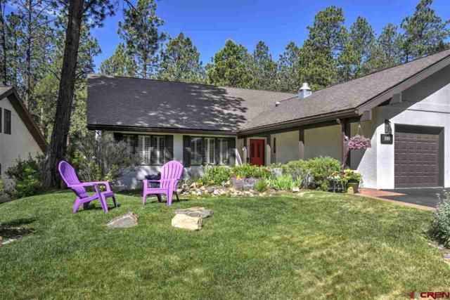 335 Hogan Circle, Durango, CO 81301 (MLS #760040) :: Durango Mountain Realty