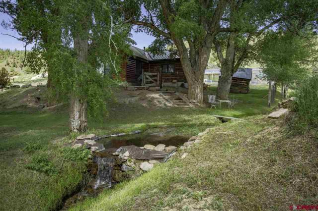 307 County Road 28, Powderhorn, CO 81243 (MLS #760113) :: The Dawn Howe Group | Keller Williams Colorado West Realty