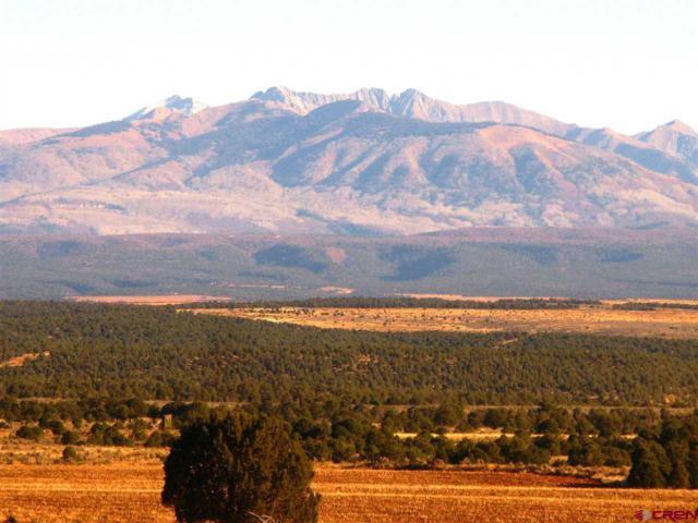 TBD Cr 106, Hesperus, CO 81326 (MLS #760173) :: Durango Mountain Realty