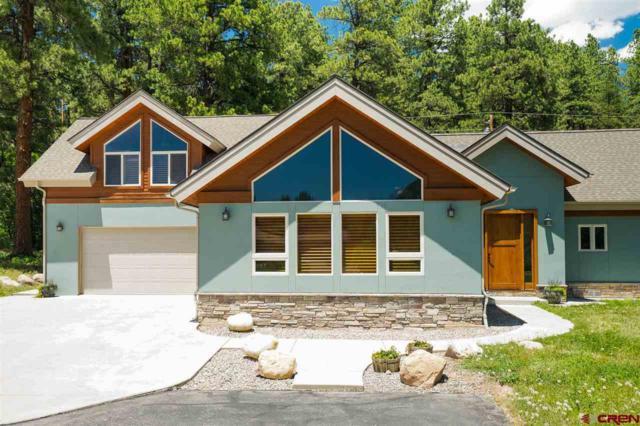 80 Sortais Road, Durango, CO 81301 (MLS #760226) :: Durango Mountain Realty