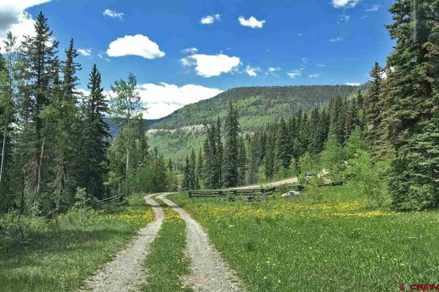 140 Macfiretree Lane, Durango, CO 81301 (MLS #760258) :: Durango Mountain Realty