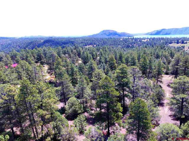 99 Cheyenne Drive, Durango, CO 81303 (MLS #760283) :: Durango Mountain Realty