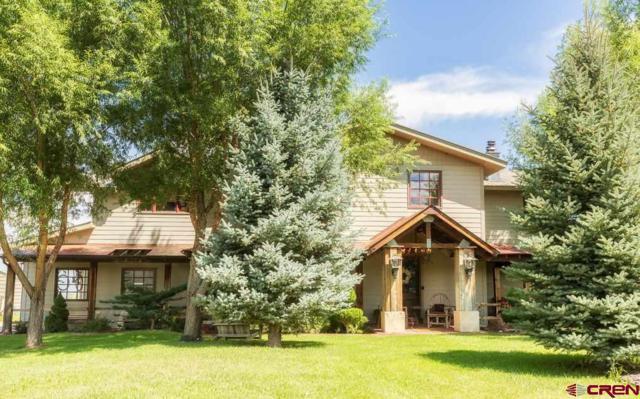 3451 Stearman Lane, Crawford, CO 81415 (MLS #760341) :: The Dawn Howe Group   Keller Williams Colorado West Realty