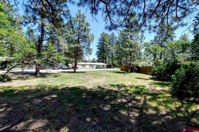 29 Hidden, Durango, CO 81303 (MLS #760396) :: Durango Mountain Realty