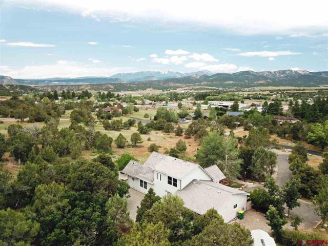 505 Valle Escondido Drive, Durango, CO 81303 (MLS #760445) :: Durango Mountain Realty