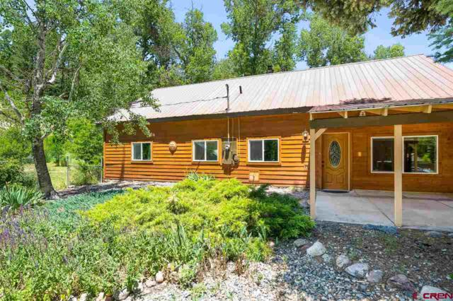35 Forrest Groves Lane, Durango, CO 81301 (MLS #760451) :: Durango Mountain Realty
