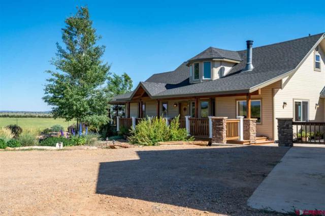 254 Land Grant, Hesperus, CO 81326 (MLS #760465) :: Durango Mountain Realty